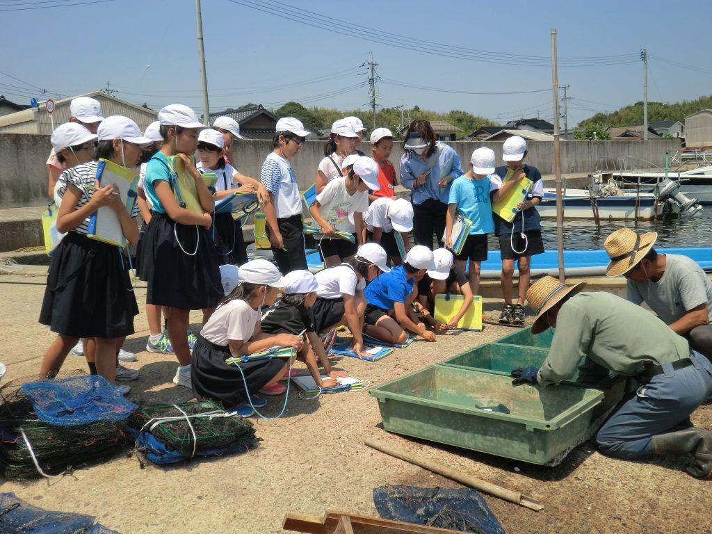 画像:大好き中海:授業でお話&赤貝復活の仕事を見に行こう