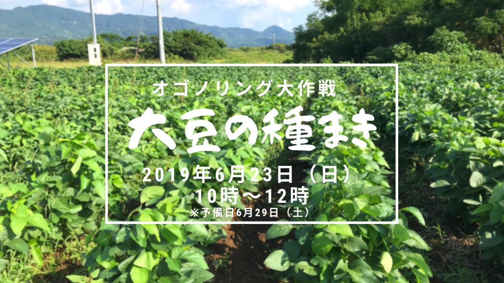 画像:【終了しました】オゴノリング大作戦! 大豆種まき