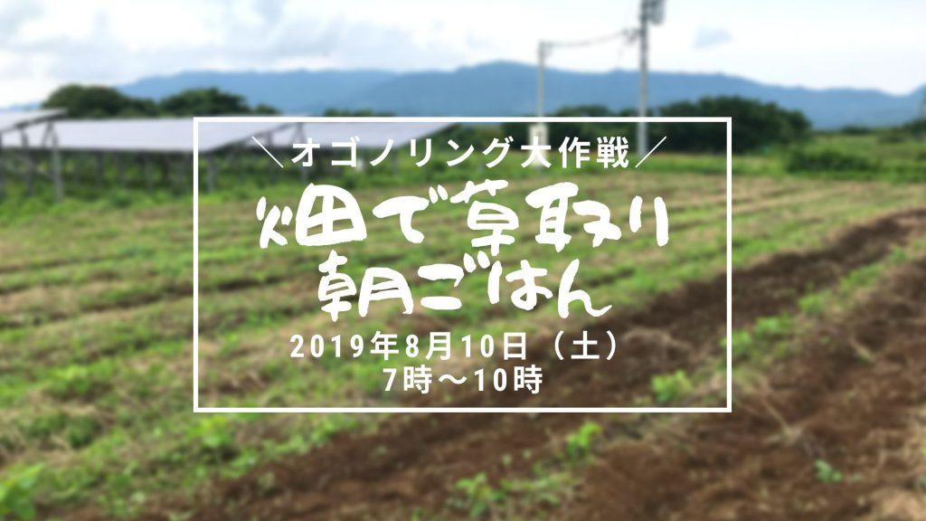 画像:【終了しました】オゴノリング大作戦!(大豆)畑で草取り朝ごはん!