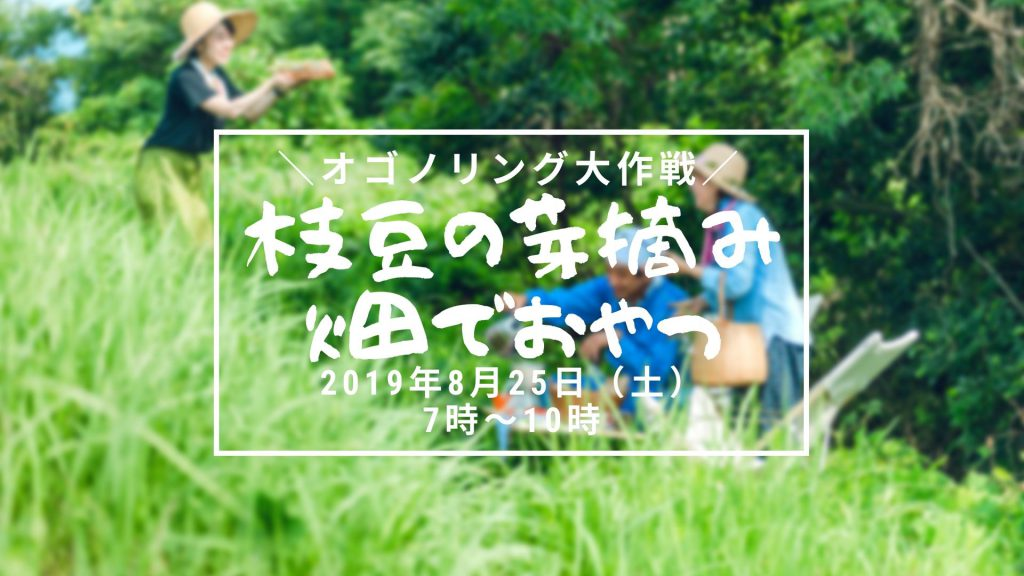 画像:【参加者募集】オゴノリング大作戦!枝豆の芽摘み 畑でおやつ