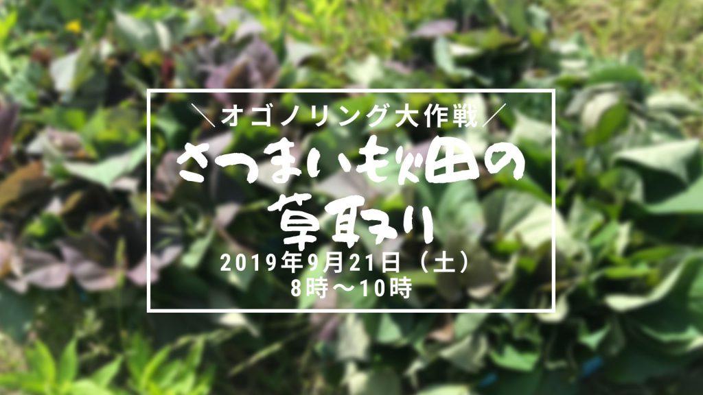 画像:【延期】オゴノリング大作戦!さつまいも畑の草取り