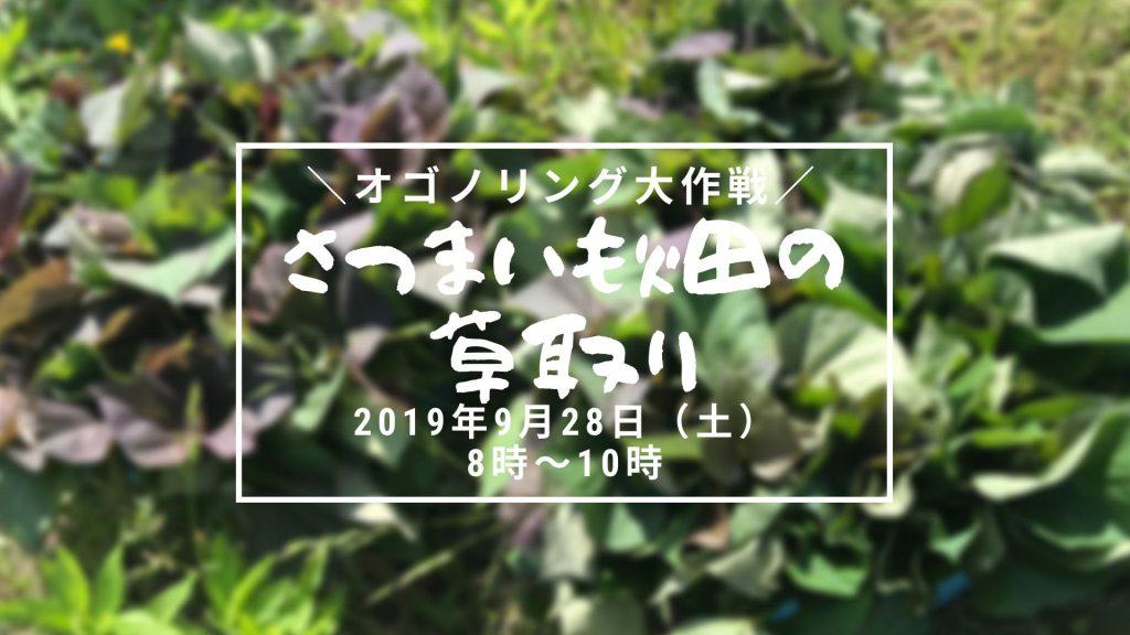 画像:【終了しました】オゴノリング大作戦!さつまいも畑の草取り(リベンジ!)