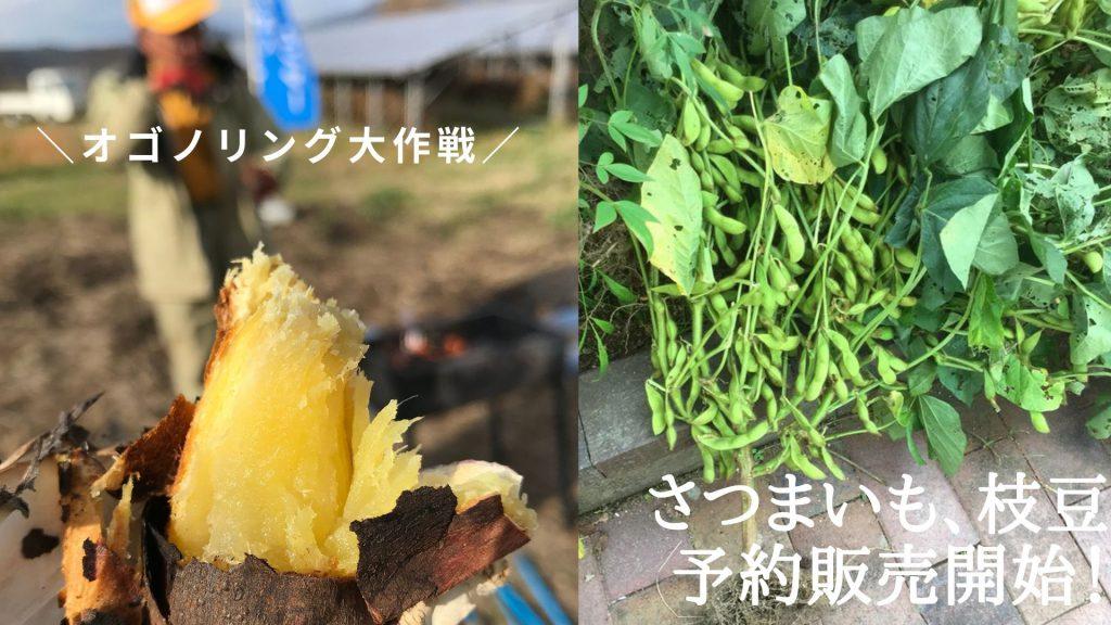 画像:【絶賛受付中!】オゴノリング大作戦 農作物予約販売