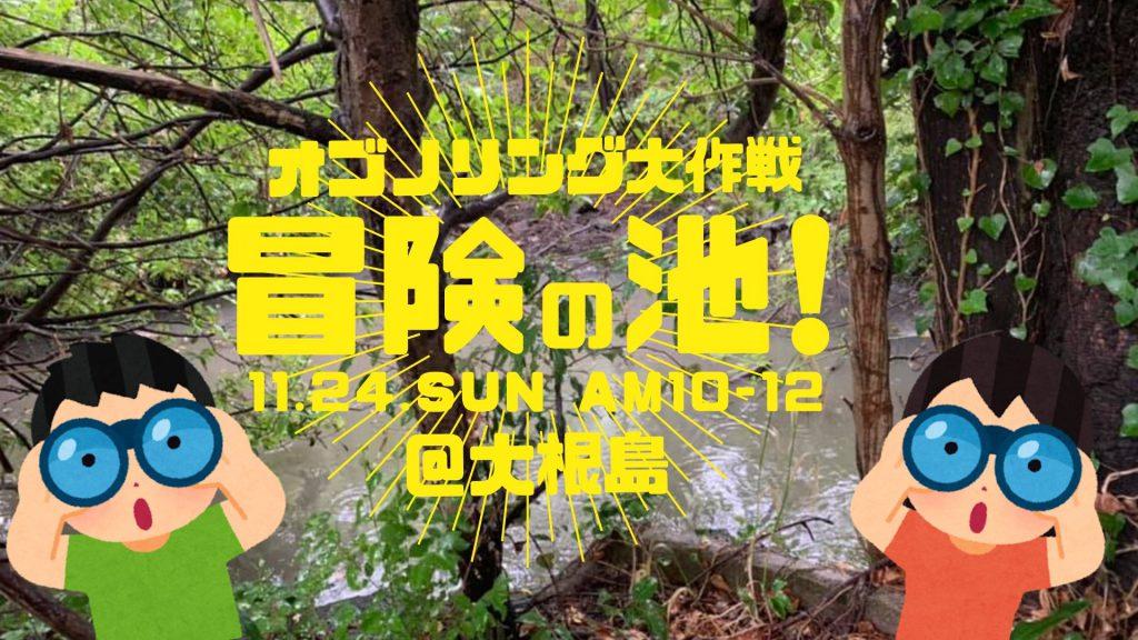 画像:【終了しました】オゴノリング大作戦 冒険の池!
