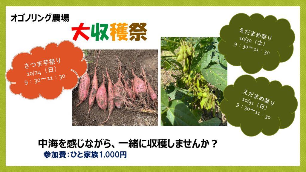 画像:【参加者募集】オゴノリング農場 大収穫祭!